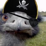 Cap'n EmuBeard